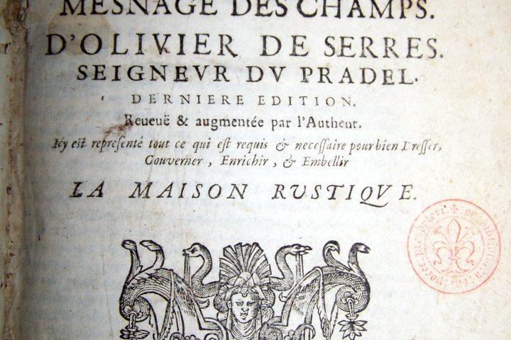 Терруар: культурный контекст винодельческого термина